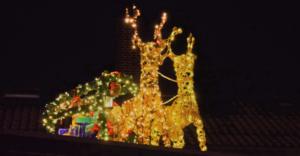 Fotografie RedKnights GER1 Beleuchtung Renntiere auf dem Dach